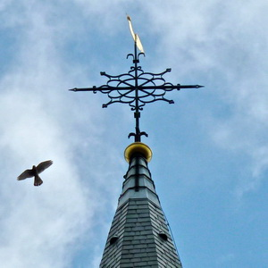 toren-mettorenvalkpeterforshovel300pix